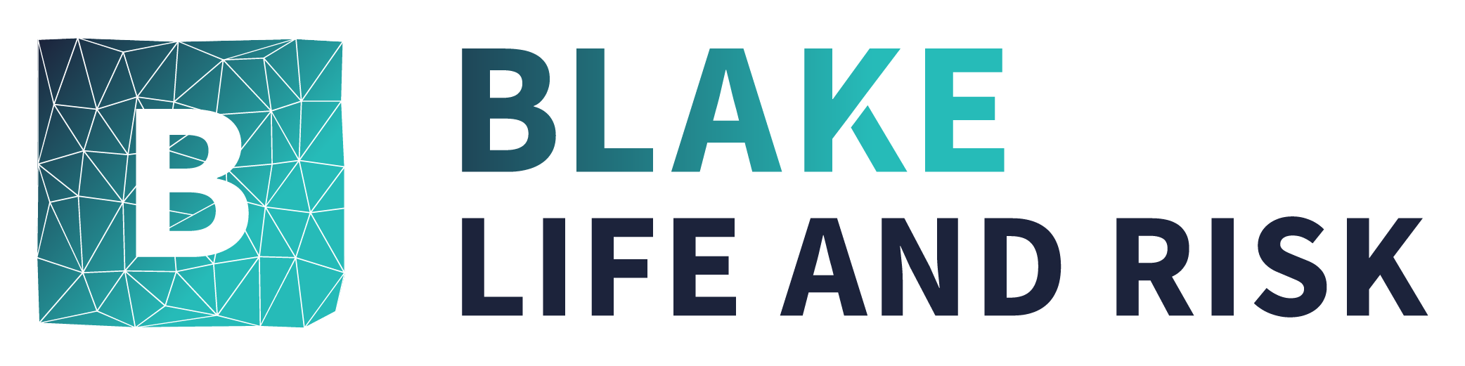 Blake Life And Risk